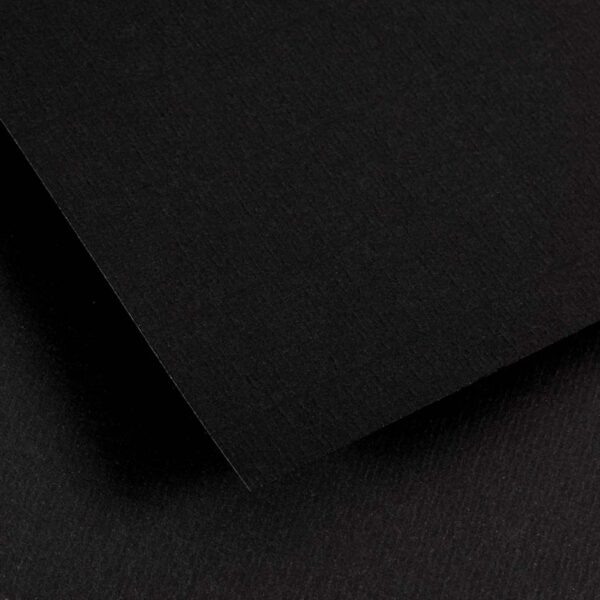 Canson Ingres Drawing Papers - Stygian Black 19.5 x 25.5 in 100gsm (27lb)