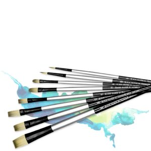 Dynasty Black Silver Brushes
