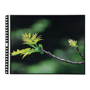 Itoya Art Profolio Landscape PolyGlass Refill 17 x 11in