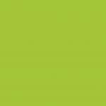 6015 - Viper