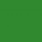 6040 - Grass Green