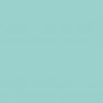 6320 - Nemo
