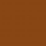 8050 - Squirrel