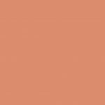 8130 - Plaster