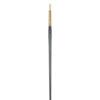 Princeton Dakota 6300 Series Synthetic Brushes - Round Sz 12