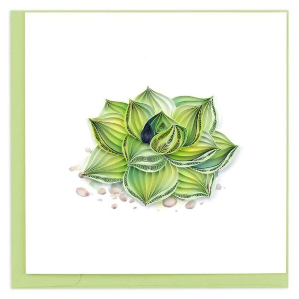 Quilled Succulent Plant Card