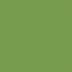 Olive Green 046