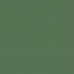 Chrome Green Medium 085