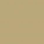 Iridescent Rich Pale Gold 113