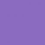Parma Violet 216
