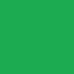 Permanent Green Light 234