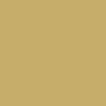 Brown Ochre 241