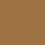 Earth Brown 243