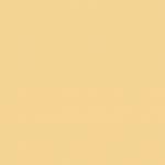 Orange 040