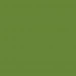 Moss Gray Green 168