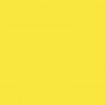 Cadmium Yellow Orange 198