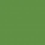 Chromium Green 228