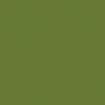 Olive Green 237