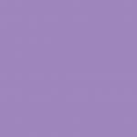 Violet Brown Lake 445