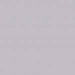 Gray 519