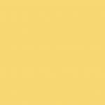 Cadmium Yellow Deep 612