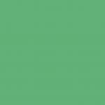 Iridescent Deep Green 811