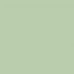 Iridescent Olive Green 813