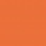 Nasturtium Orange 931