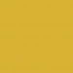 Amber 953