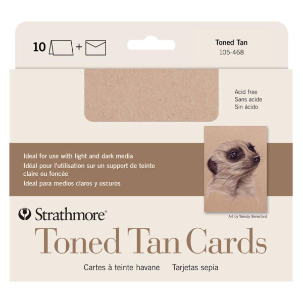 Strathmore Art Surface Greeing Cards - Toned Tan Pack of 10 5 x 7 in