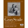 Strathmore 400 Series Gray Scale - 9 x 12 in Medium Surface 216gsm (80lb)