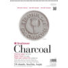Strathmore 500 Series Charcoal Pads - Assorted 12 x 18 in 95gsm (64lb)
