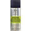 Winsor and Newton General Purpose Spray Varnish - High Gloss 10.76 oz (305g)