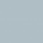 Cool Gray 30