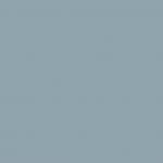Cool Gray 40