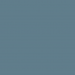Cool Gray 60